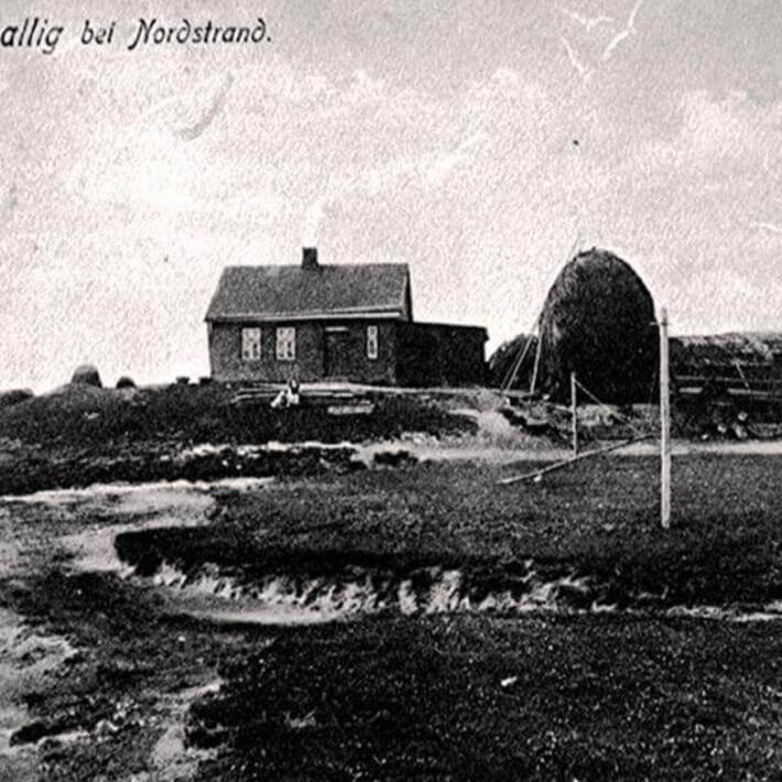 Pohnshallig - die Pohnshallig vor der Eindeichung des Pohnshalligkoogs
